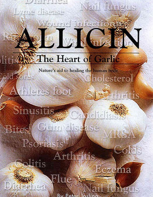 Allicin – The Heart of Garlic Nature's aid to healing the human body